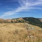 Big Sur Views
